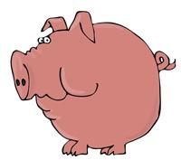 Worried pig