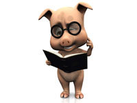 Pig reading a book