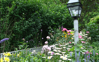 tending your garden claim your stakes