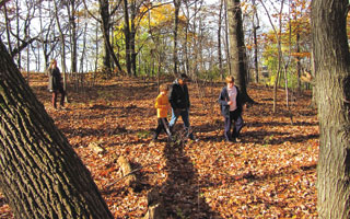 Peabody parents look to convert wetland to outdoor learning space
