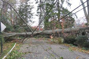 Hurricane Sandy damage in Briarcliff Manor New York