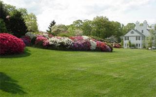 Lasdon Arboretum Somers NY