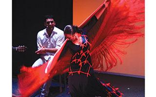 Flamenco Mayte Vicens