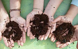Conservation Cafe Composting Food Waste