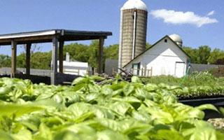 Farming Hilltop Hanover Farm