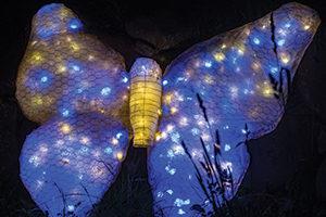 LIGHTSCAPES VanCortlandt Manor, Croton-on-Hudson