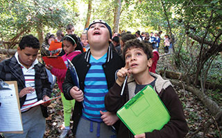 Students explore the Peabody Preserve Outdoor Classroom.