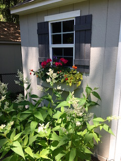 A window box dresses up this humble garden shed and adds a spark of color to an otherwise neutral palette.