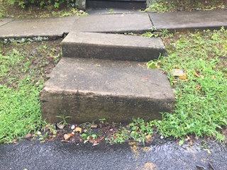 Uneven sidewalks and eroded curbing to be replaced on Horsechestnut Road.